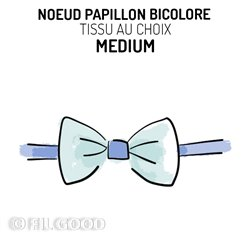 Nœud papillon bicolore MEDIUM