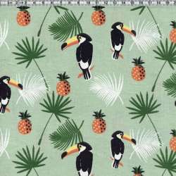 Ananas toucans